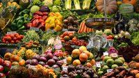 معرفی و توضیحات انواع گیاهخواری - اکوسیستم