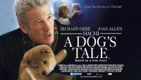 دانلود فیلم هاچی: داستان یک سگ