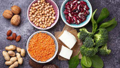 پروتئین در گیاهخواری